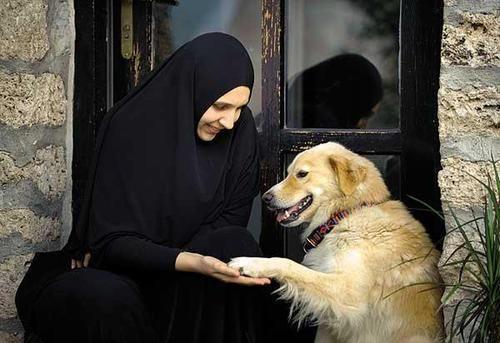 Почему в православии собака считается нечистым животным